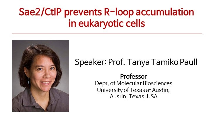 [Seminar] Prof. Tanya Tamiko Paull (University of Texas at Austin) - Sae2/CtlP prevents R-loop accumulation in eukaryotic cells 사진