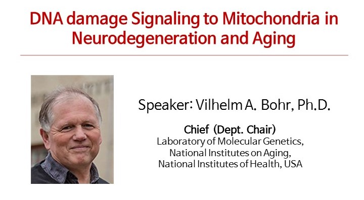 [Seminar] VilhelmA. Bohr, Ph.D.(National Institute on Aging) - DNA damage Signaling to Mitochondria in Neurodegeneration and Aging 사진